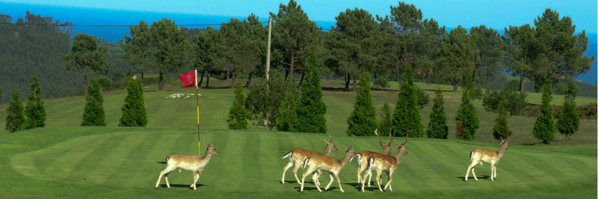 campo de Golf de La Rasa